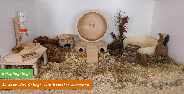 Hamster-Beispiel-Gehege-Einrichtung