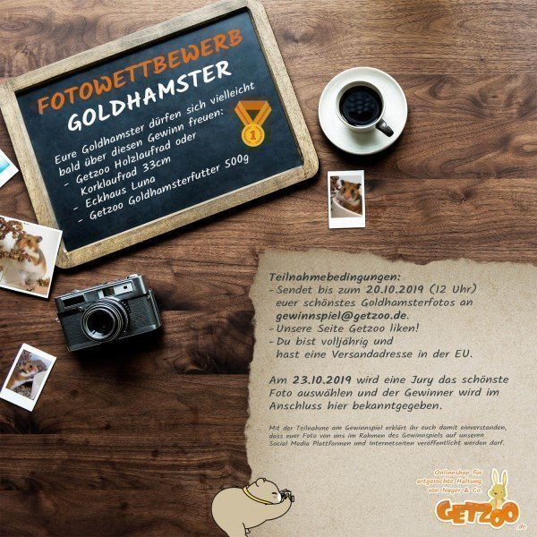 Fotowettbewerb-2019-Oktober-Gewinnspiel-Goldhamster-Gewinn
