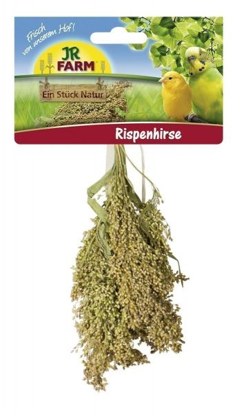 JR Farm Rispenhirse 100g
